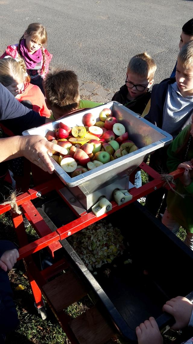 Apfelernte und Verarbeitung im RUZ Okt2018 Klassen 2a2bHP42